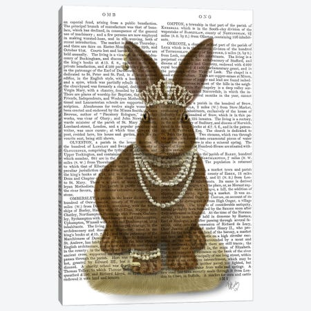 Rabbit and Pearls, Full II Canvas Print #FNK1534} by Fab Funky Canvas Wall Art