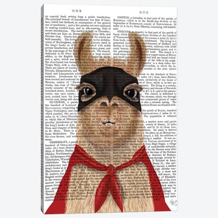 Super Llama Canvas Print #FNK1538} by Fab Funky Art Print