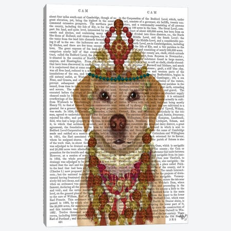 Yellow Labrador and Tiara, Portrait II Canvas Print #FNK1555} by Fab Funky Canvas Artwork