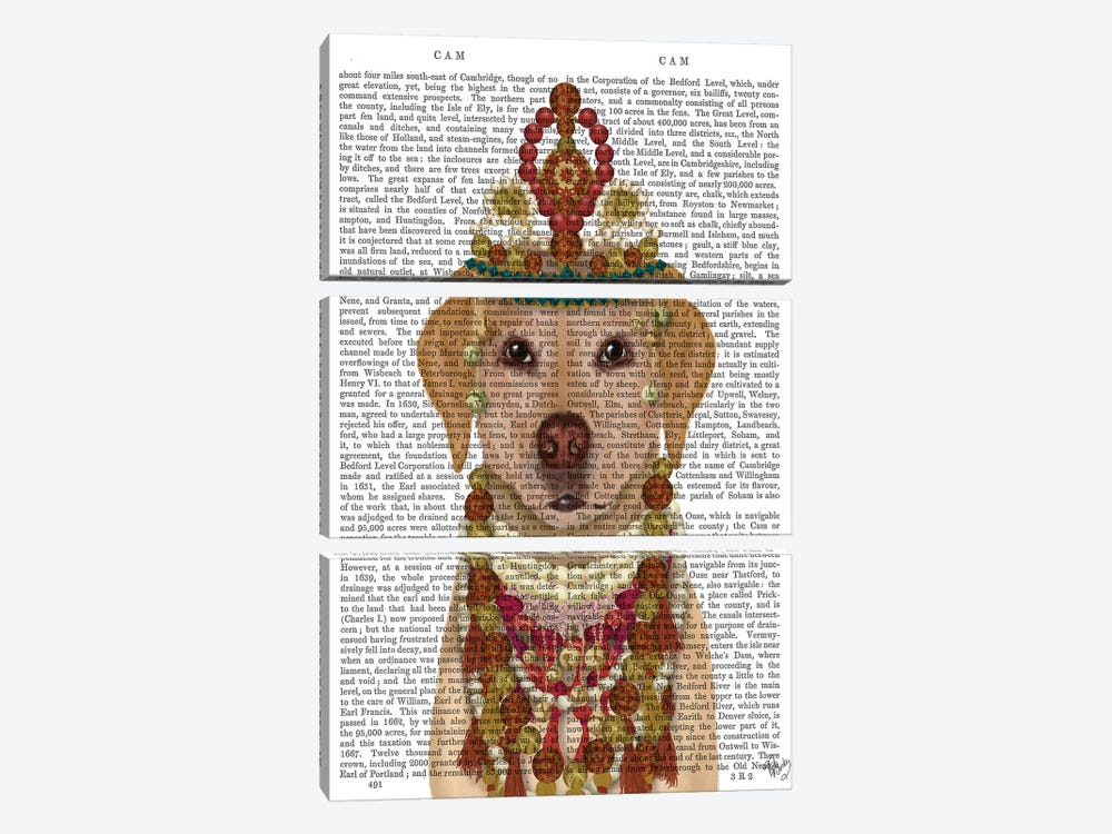 Yellow Labrador and Tiara, Portrait II by Fab Funky 3-piece Canvas Art Print