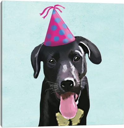 Zany Birthday IV Canvas Art Print