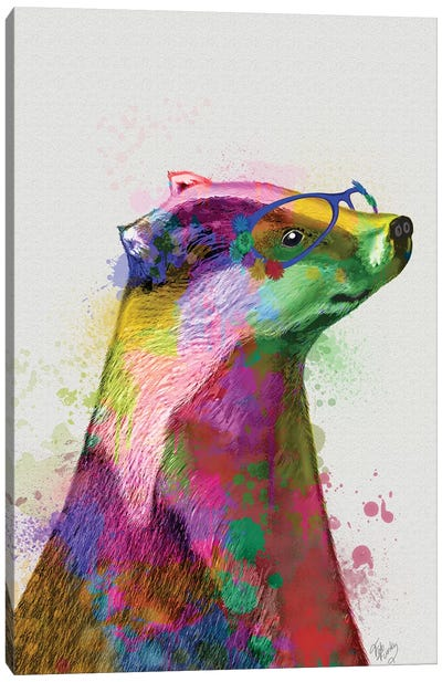 Badger Rainbow Splash 2 Canvas Art Print