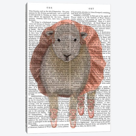 Ballet Sheep 1 Book Print Canvas Print #FNK1573} by Fab Funky Canvas Print