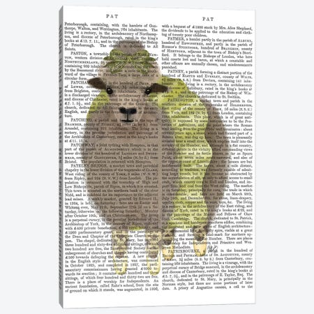 Ballet Sheep 2 Book Print Canvas Print #FNK1574} by Fab Funky Canvas Artwork
