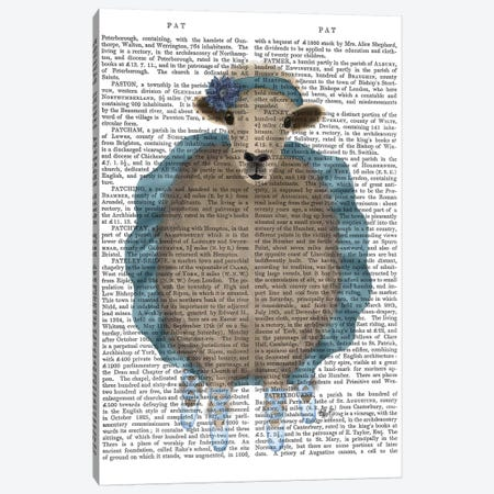 Ballet Sheep 3 Book Print Canvas Print #FNK1575} by Fab Funky Canvas Artwork
