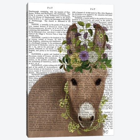 Donkey Bohemian 2 Book Print Canvas Print #FNK1657} by Fab Funky Art Print