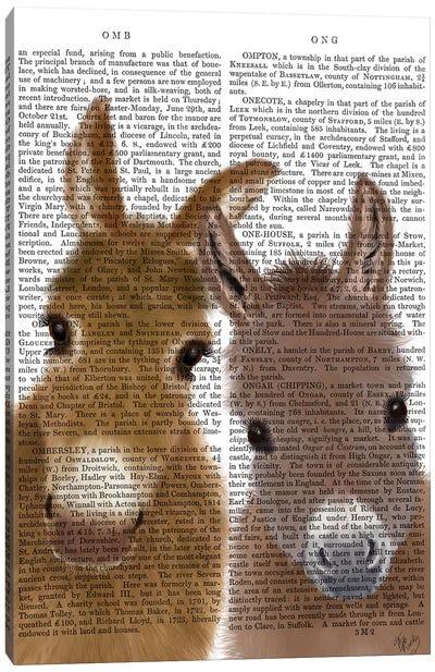 Donkey Duo, Looking at You Book Print Canvas Art Print