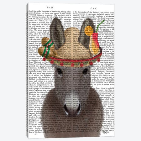 Donkey Sombrero Book Print Canvas Print #FNK1686} by Fab Funky Canvas Art