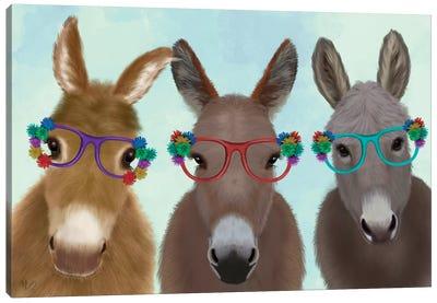 Donkey Trio Flower Glasses Canvas Art Print