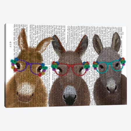 Donkey Trio Flower Glasses Book Print 3-Piece Canvas #FNK1692} by Fab Funky Canvas Artwork