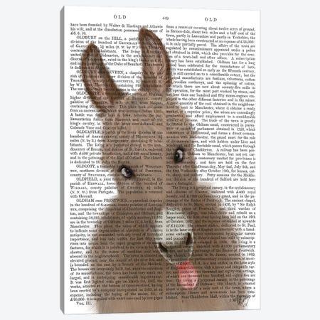 Funny Farm Donkey 2 Book Print Canvas Print #FNK1711} by Fab Funky Canvas Print