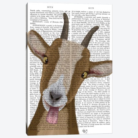 Funny Farm Goat 3 Book Print Canvas Print #FNK1716} by Fab Funky Canvas Artwork