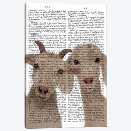 Goat Duo, Looking at You Book Print Canvas Print #FNK1734} by Fab Funky Canvas Wall Art