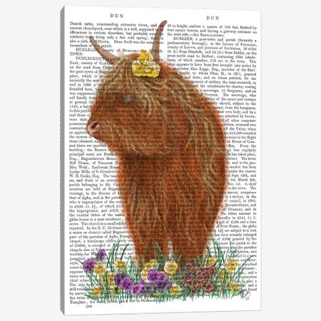 Highland Cow, Pansy Book Print Canvas Print #FNK1771} by Fab Funky Art Print
