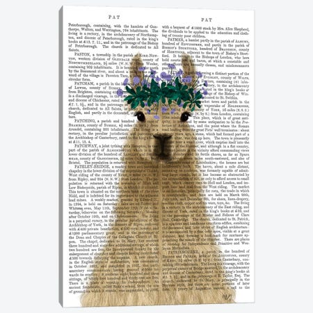 Llama Bohemian 1 Book Print Canvas Print #FNK1804} by Fab Funky Canvas Wall Art