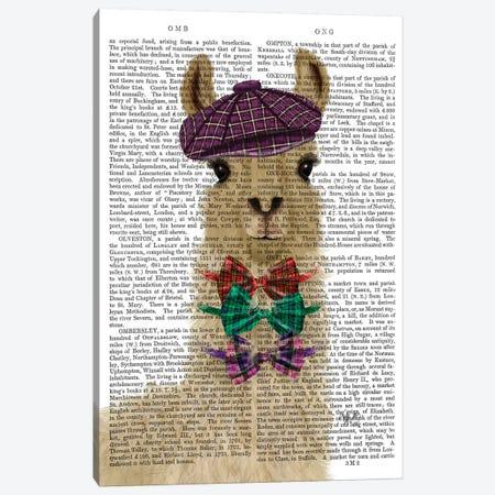 Llama Dapper Book Print Canvas Print #FNK1813} by Fab Funky Canvas Art