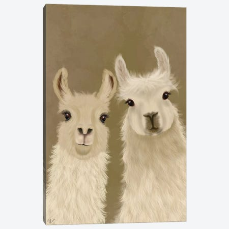 Llama Duo, Looking at You Canvas Print #FNK1814} by Fab Funky Canvas Print