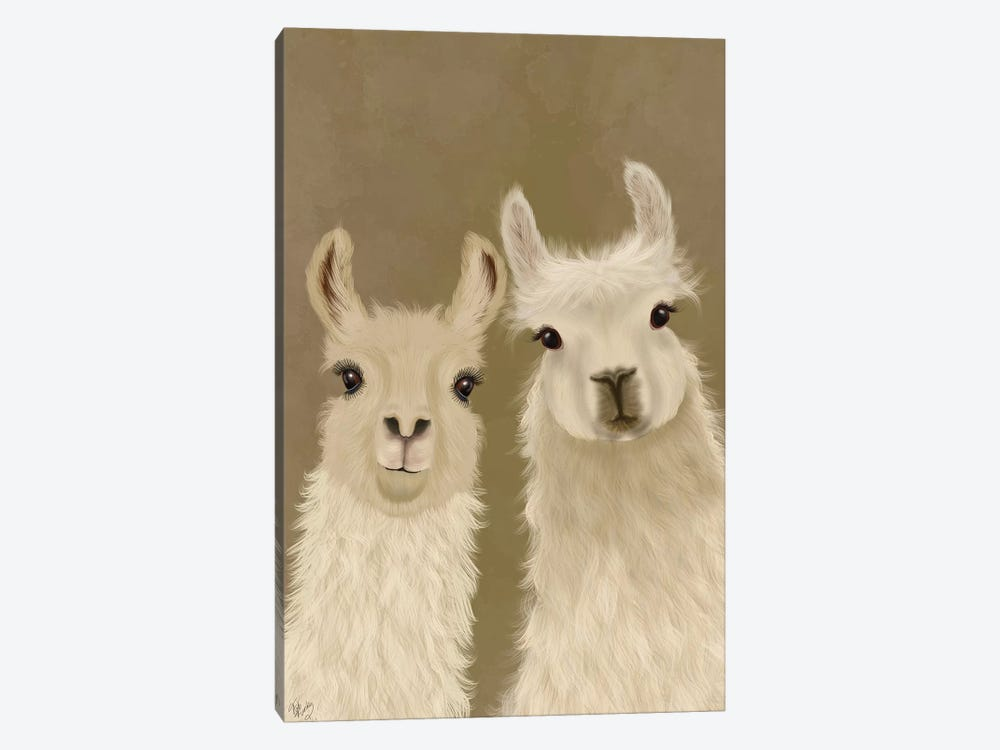 Llama Duo, Looking at You by Fab Funky 1-piece Canvas Print