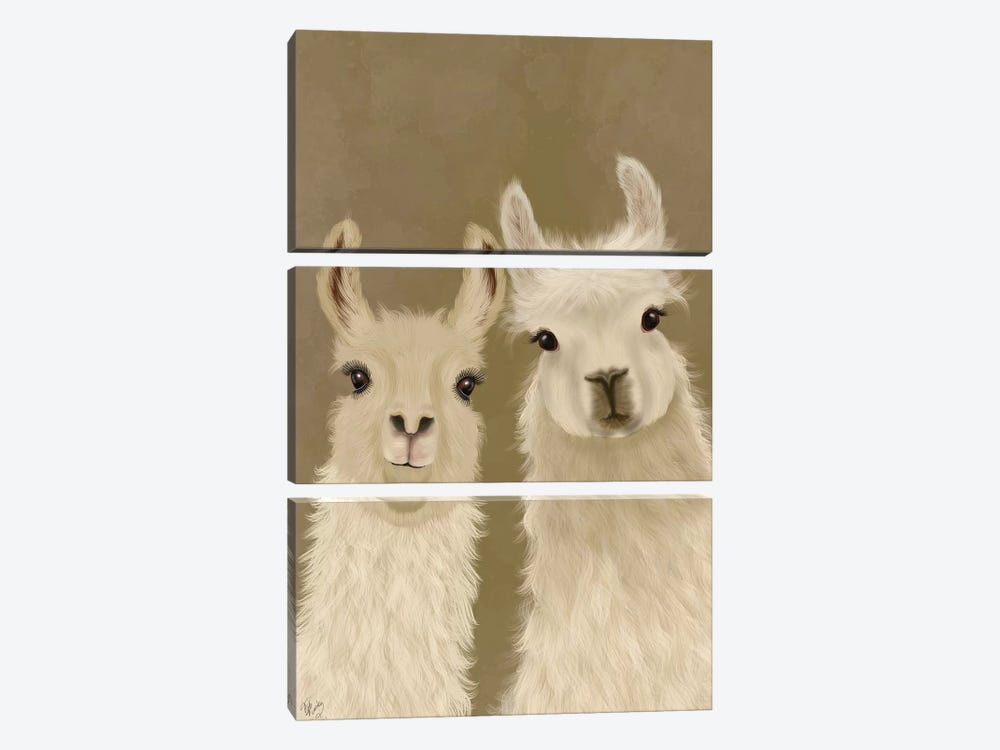 Llama Duo, Looking at You by Fab Funky 3-piece Canvas Art Print