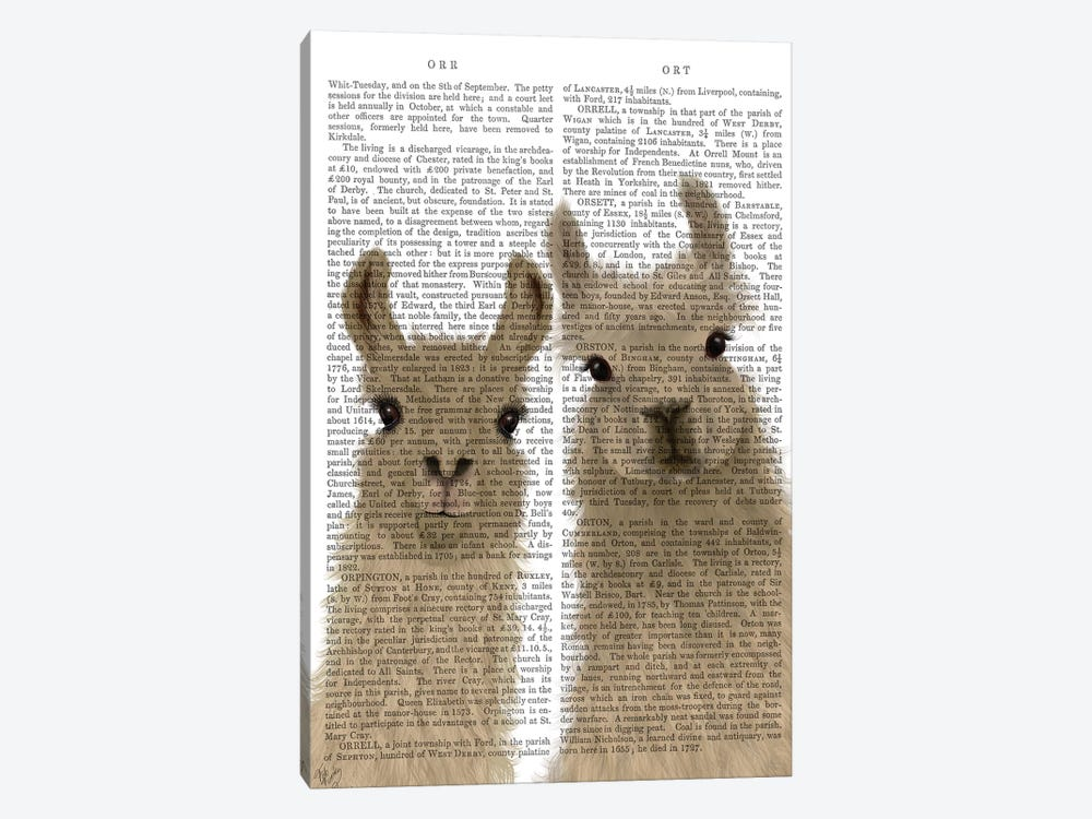 Llama Duo, Looking at You Book Print by Fab Funky 1-piece Canvas Artwork