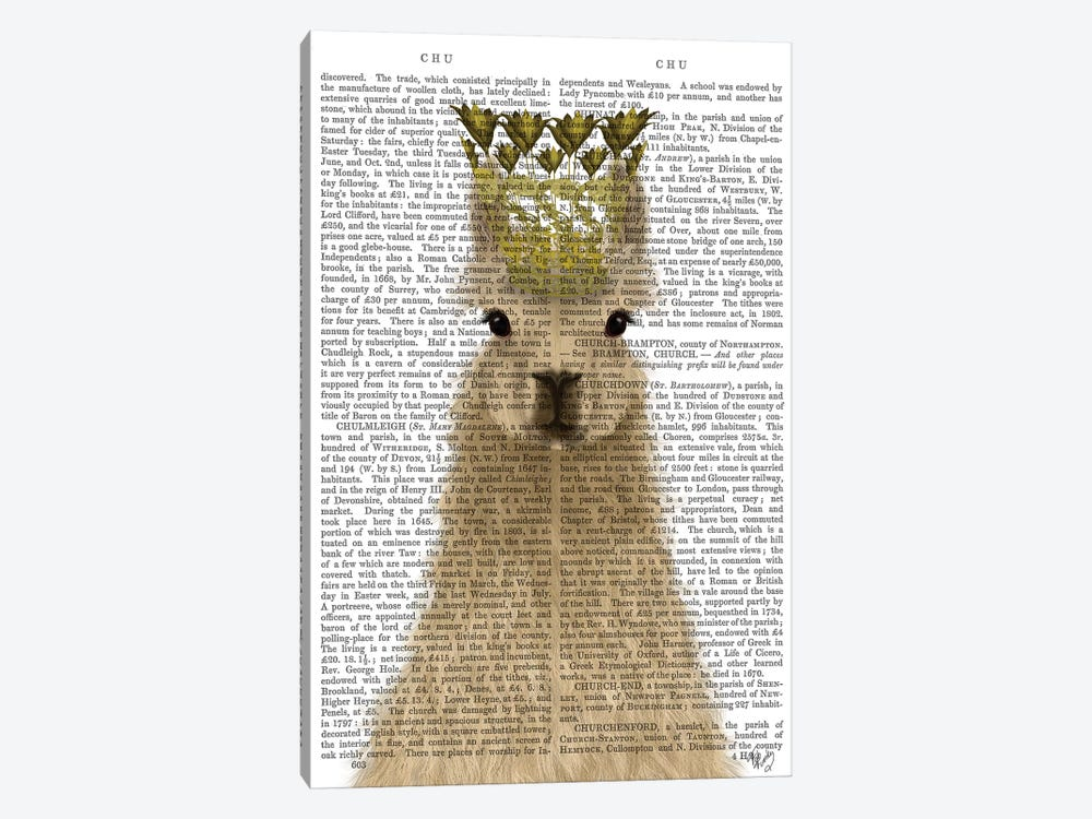 Llama Queen Book Print by Fab Funky 1-piece Canvas Print