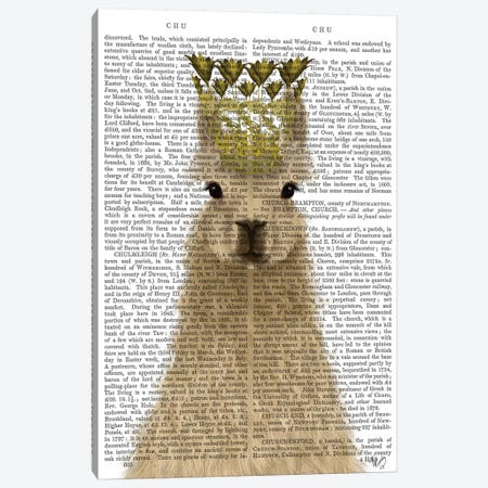 Llama Queen Book Print Canvas Print #FNK1827} by Fab Funky Canvas Artwork
