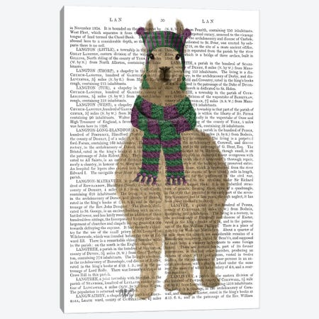 Llama with Purple Scarf, Full Book Print Canvas Print #FNK1836} by Fab Funky Canvas Print
