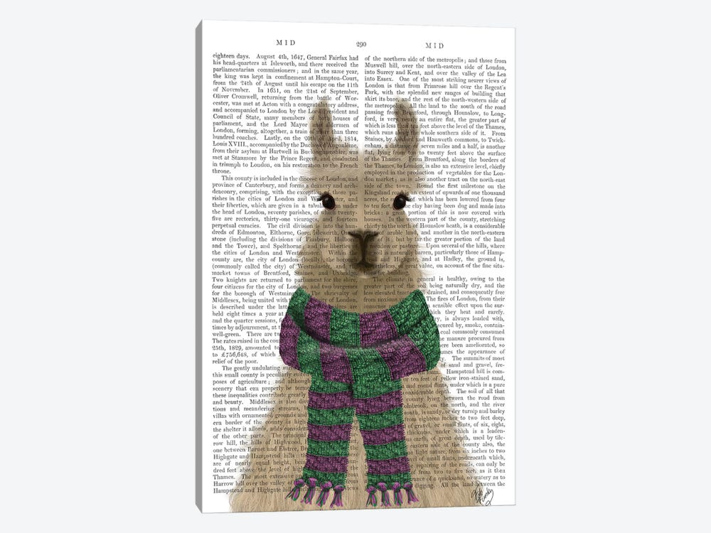 Llama with Purple Scarf, Portrait Book Print by Fab Funky 1-piece Canvas Art