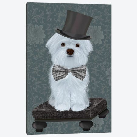 Maltese with Top Hat Canvas Print #FNK1840} by Fab Funky Canvas Print