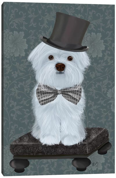 Maltese with Top Hat Canvas Art Print