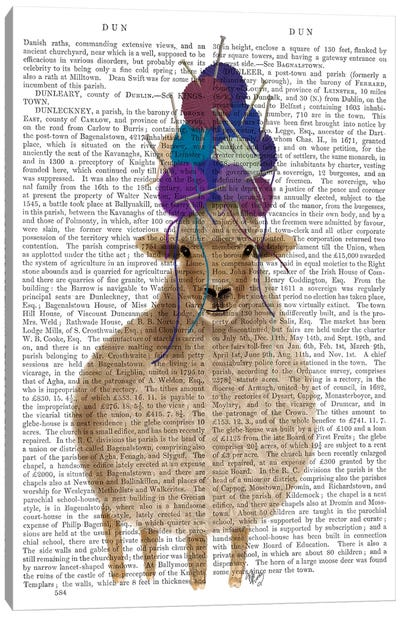 Sheep with Wool Hat, Full Book Print Canvas Art Print
