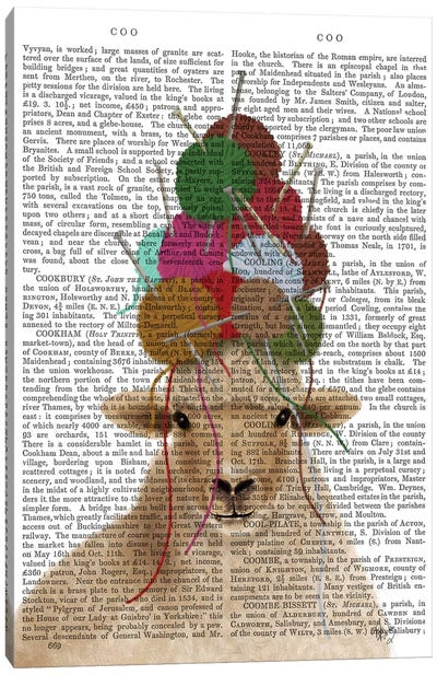 Sheep with Wool Hat, Portrait Book Print Canvas Art Print