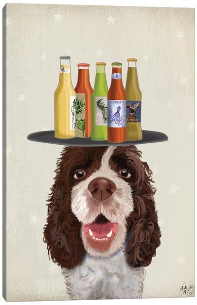 Springer Spaniel Brown White Beer Lover Canvas Art Print