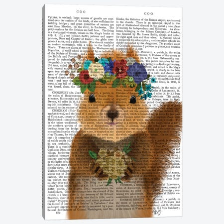 Squirrel Bohemian Book Print Canvas Print #FNK1907} by Fab Funky Canvas Art Print