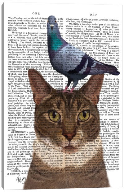 Cat With Pigeon On Head I Canvas Art Print