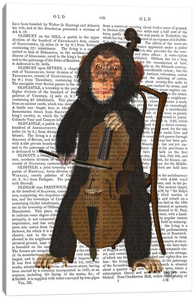 Chimp Playing A Cello I Canvas Print #FNK215