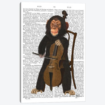 Chimp Playing A Cello I 3-Piece Canvas #FNK215} by Fab Funky Canvas Artwork