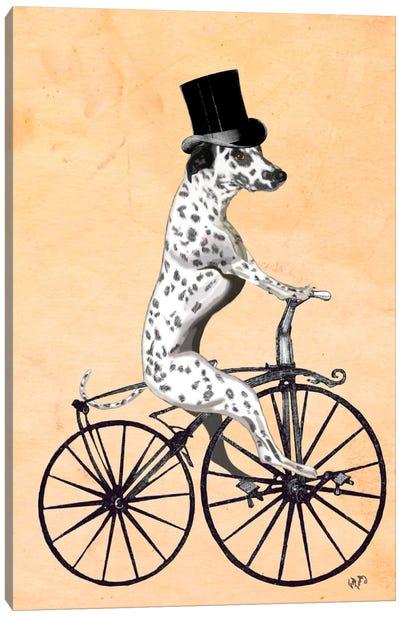 Dalmatian On Bicycle Canvas Print #FNK21