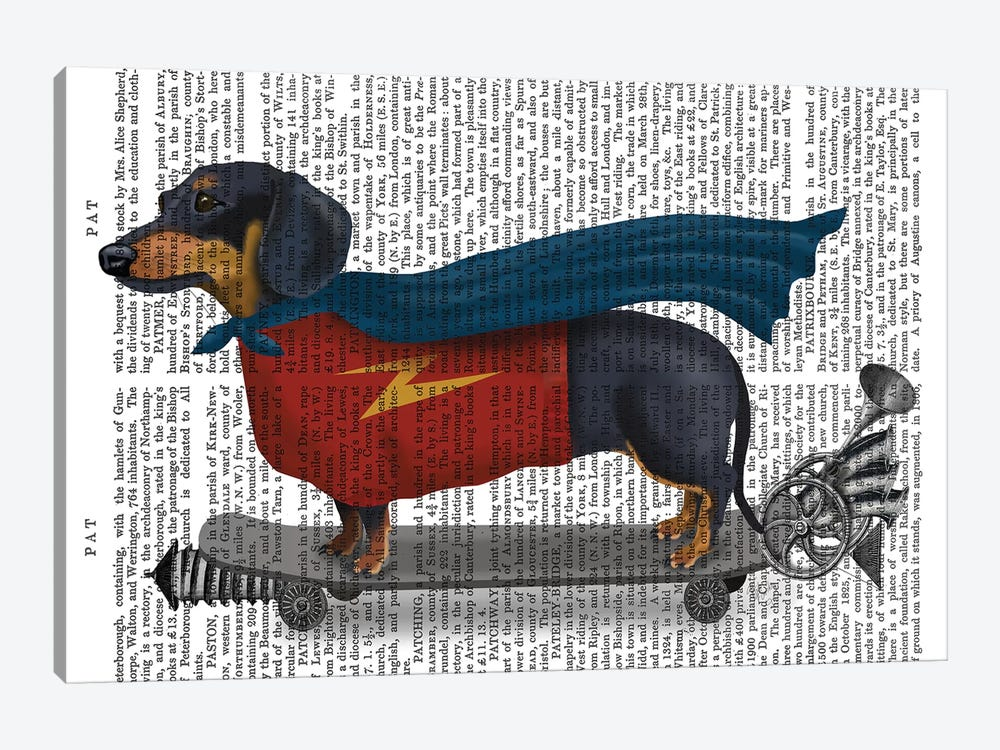 Dachshund On Skateboard I by Fab Funky 1-piece Canvas Art Print
