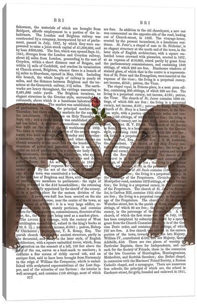 Elephant Heart I  Canvas Print #FNK237