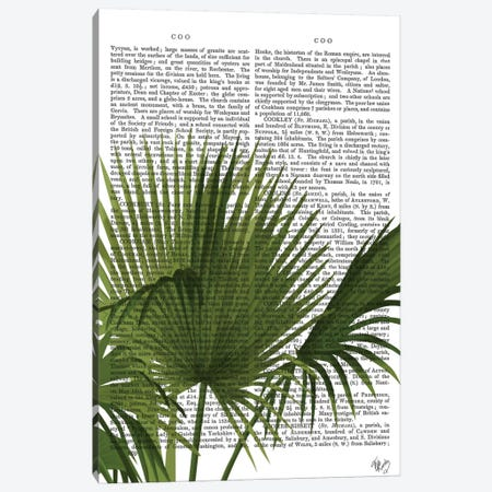 Fan Palm I Canvas Print #FNK242} by Fab Funky Canvas Artwork