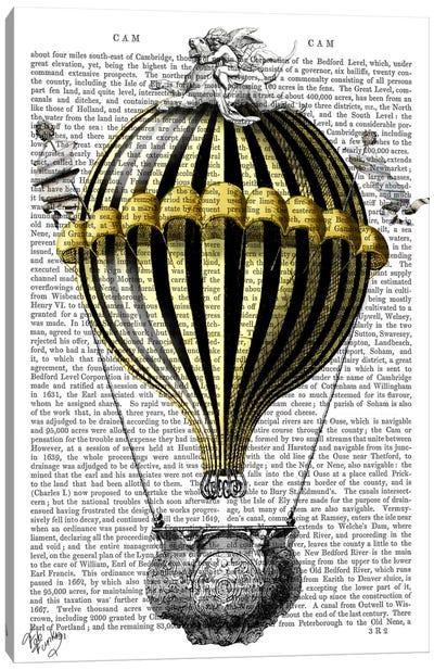 Baroque Fantasy Balloon II Canvas Print #FNK2