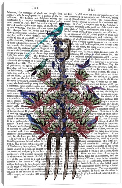 Garden Fork And Birds I Canvas Print #FNK315