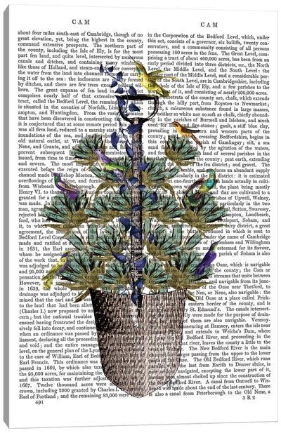 Garden Spade And Birds I Canvas Print #FNK318