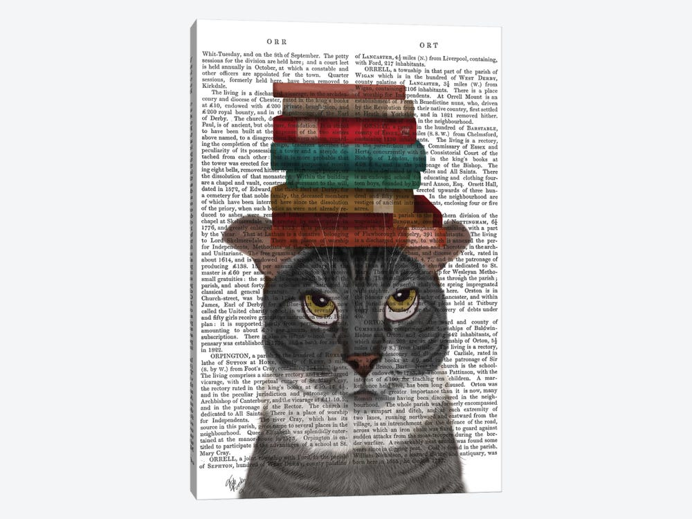 Grey Cat With Books On Head I by Fab Funky 1-piece Canvas Print