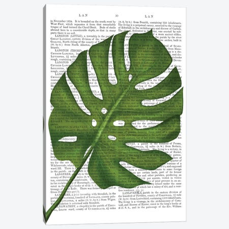 Monstera Leaf I Canvas Print #FNK359} by Fab Funky Canvas Wall Art