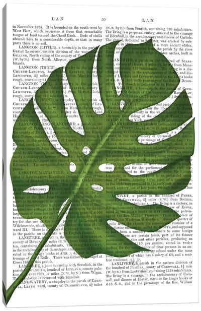 Monstera Leaf I Canvas Art Print