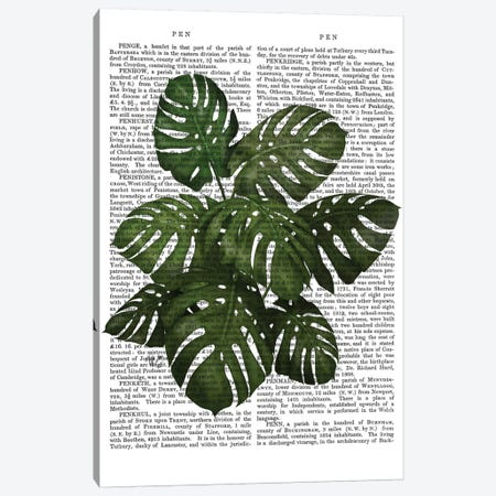 Monstera Plant I Canvas Print #FNK364} by Fab Funky Canvas Wall Art