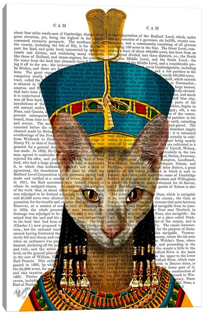 Egyptian Queen Cat Canvas Print #FNK37