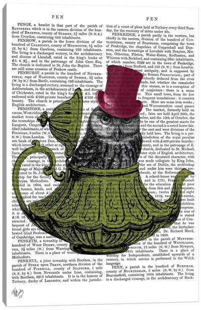 Owl In Teapot I Canvas Print #FNK382